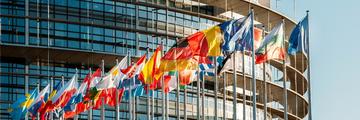 Hero - EU flags